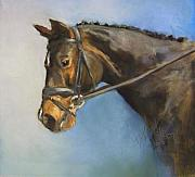Horse Pastels Posters - Showhorse Poster by Debbie Anderson