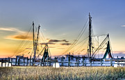 Charleston Sunset Framed Prints - Shrimp Boats Framed Print by Drew Castelhano