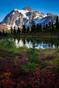 Washington Photos - Shuksan Autumn by Inge Johnsson