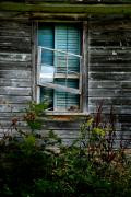 Broken Window Posters - Shuttered Hopes Poster by Emily Stauring