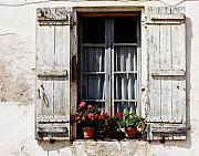 French Village Framed Prints - Shutters and Geraniums Framed Print by Marion McCristall