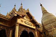 Rangoon Art - Shwedagon at sunset by Jessica Rose