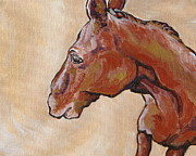 Donkey Originals - Shy Away by Sandy Tracey