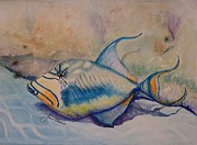 Triggerfish Paintings - Shy Trigger by Joan Stuart