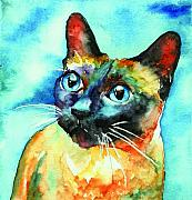Cats Painting Metal Prints - Siamese Cat Metal Print by Christy  Freeman