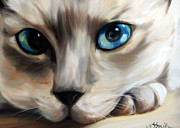 Oils Pastels - Siamese Cat Eyes by Mary Sparrow Smith
