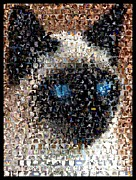 Mosaic Mixed Media - Siamese Cat Mosaic by Paul Van Scott
