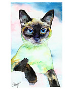 Siamese Paintings - Siamese Cat Posing by Christy  Freeman