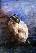Watercolor Cat Print Prints - Siamese Cat Print by Zaira Dzhaubaeva