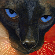 Striking Photography Painting Prints - Siamese Print by Karen Zuk Rosenblatt