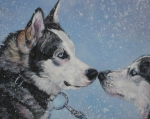 Siberian Husky Paintings - Siberian Huskies in snow by Lee Ann Shepard