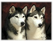 Siberian Huskies Related Print by Maxine Bochnia