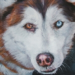Siberian Husky Red Print by Lee Ann Shepard
