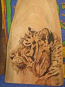 Tiger Pyrography Originals - Sibirean Tiger by Carlos Gayol