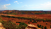 Sicily Photo Prints - Sicilian Landscape Print by Madeline Ellis