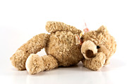 Cuddly Photos - Sick teddy bear by Blink Images
