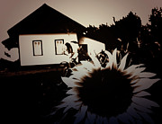 Edmonton Photographer Photo Prints - Side of the Sun Print by Jerry Cordeiro