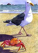 Beach Wildlife Posters - Side Stepping Poster by Catherine G McElroy
