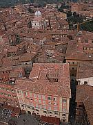 City Streets Posters - Siena from above Poster by Jim Wright