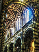 Siena Italy - Siena Catheral Print by Gregory Dyer