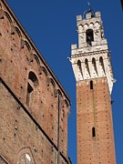 Town Square Framed Prints - Siena, Torre Del Mangia Framed Print by Lysvik Photos