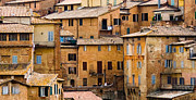 Sienna Italy Framed Prints - Sienna Framed Print by Heather Kallhoff