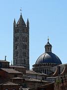Sienna's Duomo Print by Elizabeth Fontaine-Barr