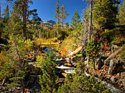 Sierra Nevada Photos - Sierra Nevada Fall Beauty at Lily Lake by Scott McGuire