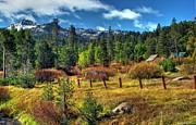 Sierra Nevada Fall Majesty Print by Scott McGuire