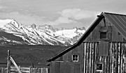 Monochrome Art - Sierra Nevada Rustic Barn by Scott McGuire