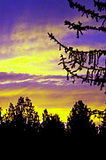 Gary Brandes Photo Acrylic Prints - sierra Sunrise Acrylic Print by Gary Brandes