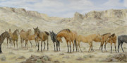 Wild Mustangs Posters - Siesta at Noon Poster by Cathy Cleveland