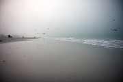 Siesta Key Prints - Siesta Key Morning Fog Print by Betsy A Cutler East Coast Barrier Islands