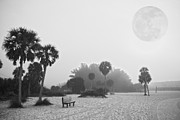 Siesta Key Posters - Siesta Moon Poster by Betsy A Cutler East Coast Barrier Islands