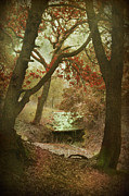 Autumn Woods Posters - Sighs of Love Poster by Laurie Search