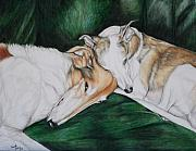 Whippet Painting Posters - Sighthound Comfort Poster by Charlotte Yealey