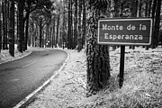 Espana Posters - Sign For Monte De La Esperanza At Roadside Beside Tree In Tenerife Canary Islands Spain Poster by Joe Fox