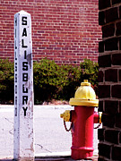 Fire Hydrants Prints - Sign In Pittsboro NC Print by Maria Massimiano