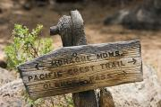 Pacific Crest Trail Framed Prints - Sign On Pacific Crest Trail To Monache Framed Print by Rich Reid