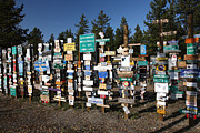 Highway Signs Posters - Sign posts forest in Watson Lake Yukon Poster by Mark Duffy