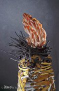 Close-up Sculptures - Signel Fire by B W Scharf
