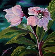 Flower Pastels - Signs of Spring by Marion Derrett