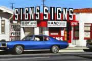 Suburban Paintings - Signs Signs by Michael Ward