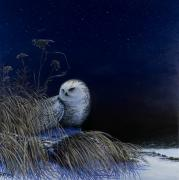 Snowy Night Paintings - Silent Night by Ellen Rittgers
