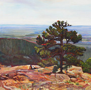 Outlook Paintings - Silent Pine by Marty Smith