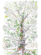 Valluzzi Drawings Prints - Silent Witness Print by Regina Valluzzi