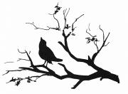 Silhouette: Bird On Branch Print by Granger