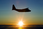 Backlit Framed Prints - Silhouette Of A Mc-130h Combat Talon Framed Print by Gert Kromhout