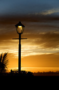 Tropical Sunset Prints - Silhouette of a street lamp Print by Fabrizio Troiani