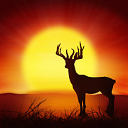 Vertebrate Prints - Silhouette Of Deer With Big Sun Print by Setsiri Silapasuwanchai